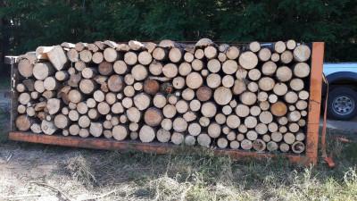 palivové dřevo metrové měkké v kontejneru1