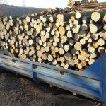metrové tvrdé dřevo v kontejneru